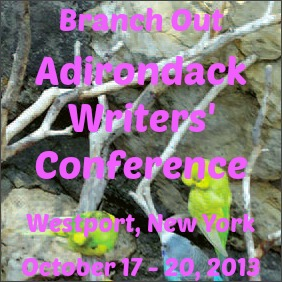 Adirondack Writers Conference Sidebar Boot Camp 4 Writers